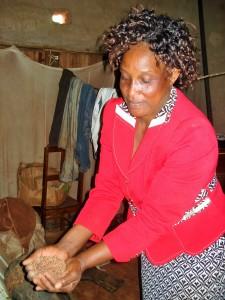 Helen distributing grain